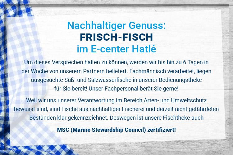 FISCH-750x500-Pixel_text